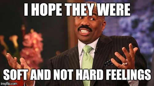 Steve Harvey Meme | I HOPE THEY WERE SOFT AND NOT HARD FEELINGS | image tagged in memes,steve harvey | made w/ Imgflip meme maker