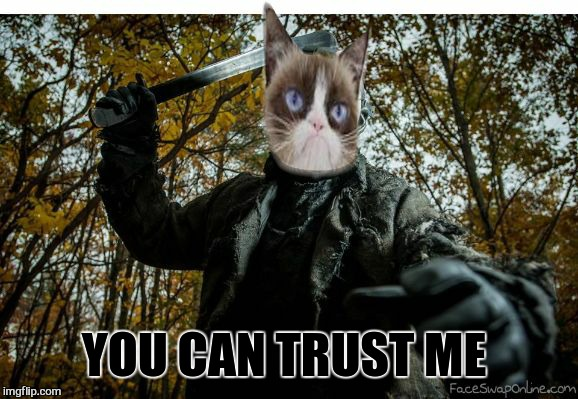 grumpy cat jason | YOU CAN TRUST ME | image tagged in grumpy cat jason | made w/ Imgflip meme maker