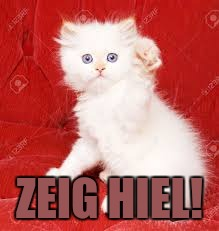 ZEIG HIEL! | image tagged in nazi kitty | made w/ Imgflip meme maker