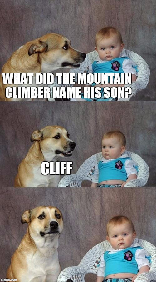 Dad Joke Dog Meme | WHAT DID THE MOUNTAIN CLIMBER NAME HIS SON? CLIFF | image tagged in memes,dad joke dog | made w/ Imgflip meme maker
