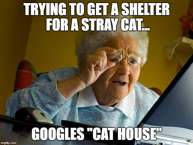 "Grandma Finds The Internet Meme | TRYING TO GET A SHELTER FOR A STRAY CAT... GOOGLES ""CAT HOUSE"" 