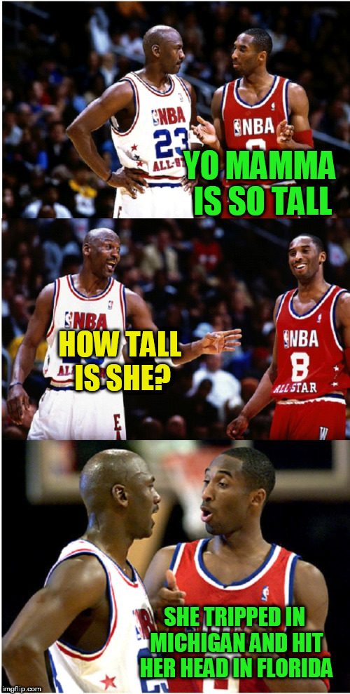 MJ and Kobe | YO MAMMA IS SO TALL SHE TRIPPED IN MICHIGAN AND HIT HER HEAD IN FLORIDA HOW TALL IS SHE? | image tagged in mj and kobe | made w/ Imgflip meme maker
