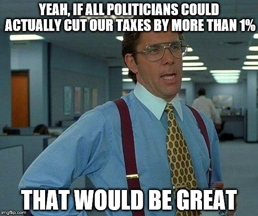 That Would Be Great Meme | YEAH, IF ALL POLITICIANS COULD ACTUALLY CUT OUR TAXES BY MORE THAN 1% THAT WOULD BE GREAT | image tagged in memes,that would be great | made w/ Imgflip meme maker