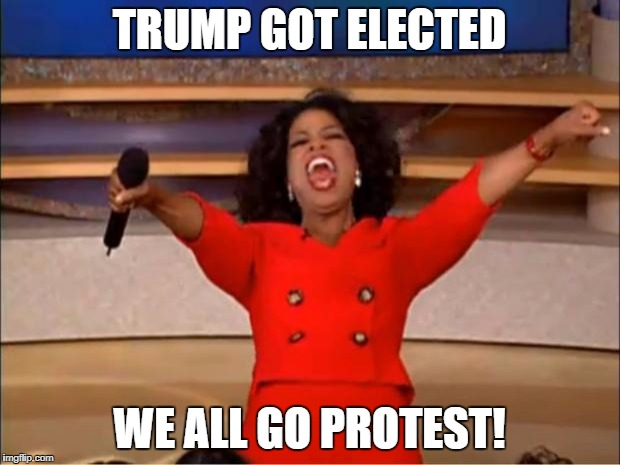 Oprah You Get A Meme | TRUMP GOT ELECTED WE ALL GO PROTEST! | image tagged in memes,oprah you get a | made w/ Imgflip meme maker