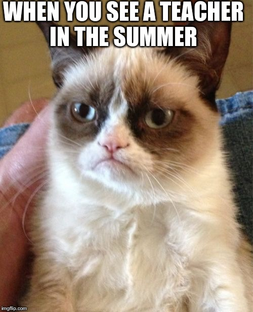 Grumpy Cat Meme | WHEN YOU SEE A TEACHER IN THE SUMMER | image tagged in memes,grumpy cat | made w/ Imgflip meme maker