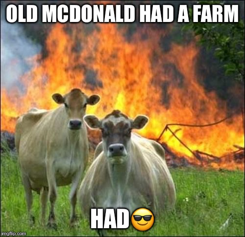 Evil Cows Meme | OLD MCDONALD HAD A FARM HAD | image tagged in memes,evil cows | made w/ Imgflip meme maker
