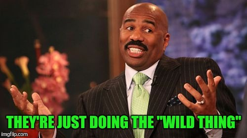 "Steve Harvey Meme | THEY'RE JUST DOING THE ""WILD THING"" 