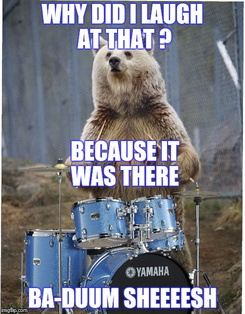 WHY DID I LAUGH AT THAT ? BECAUSE IT WAS THERE | image tagged in drummer bear | made w/ Imgflip meme maker