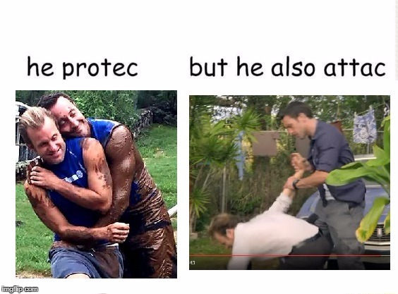For the H50 fans on imgflip. Also, feel free to start a debate on racism in the comments. | image tagged in hawaii five-0,h50,memes,he protec,but he also attac | made w/ Imgflip meme maker