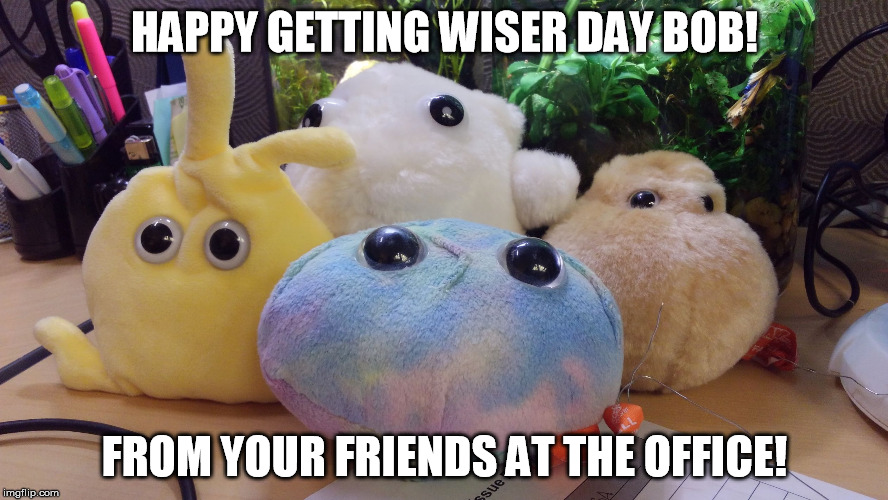 HAPPY GETTING WISER DAY BOB! FROM YOUR FRIENDS AT THE OFFICE! | image tagged in stem cell and buddies | made w/ Imgflip meme maker