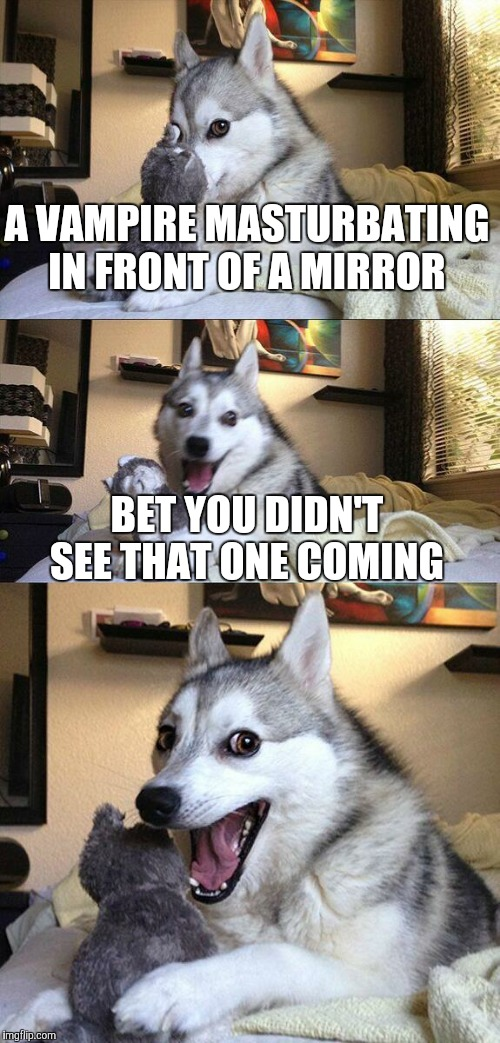 Bad Pun Dog Meme | A VAMPIRE MASTURBATING IN FRONT OF A MIRROR BET YOU DIDN'T SEE THAT ONE COMING | image tagged in memes,bad pun dog | made w/ Imgflip meme maker