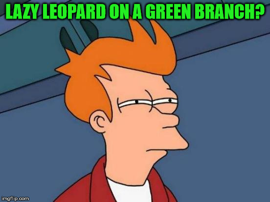 Futurama Fry Meme | LAZY LEOPARD ON A GREEN BRANCH? | image tagged in memes,futurama fry | made w/ Imgflip meme maker
