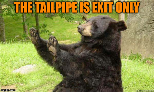 No Bear Blank | THE TAILPIPE IS EXIT ONLY | image tagged in no bear blank | made w/ Imgflip meme maker