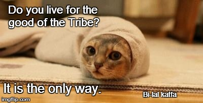 Leto Catreides II  God Empurrrurrr of Dune | Do you live for the good of the Tribe? It is the only way. Bi-lal katfa | image tagged in dune cat,spice,dune,meow'dib,meme,quotes | made w/ Imgflip meme maker