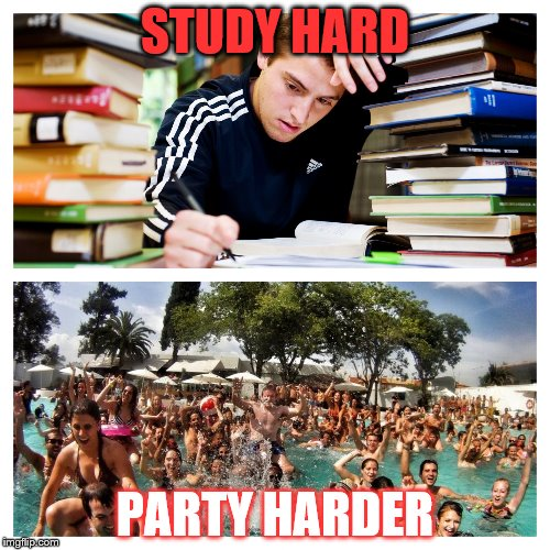 STUDY HARD PARTY HARDER | image tagged in study and party | made w/ Imgflip meme maker
