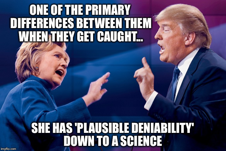 She is much more polished in this arena.  Not to mention she has an army of people to do her dirty work for her. | ONE OF THE PRIMARY DIFFERENCES BETWEEN THEM WHEN THEY GET CAUGHT... SHE HAS 'PLAUSIBLE DENIABILITY' DOWN TO A SCIENCE | image tagged in hillary trump,plausible deniability,politics | made w/ Imgflip meme maker