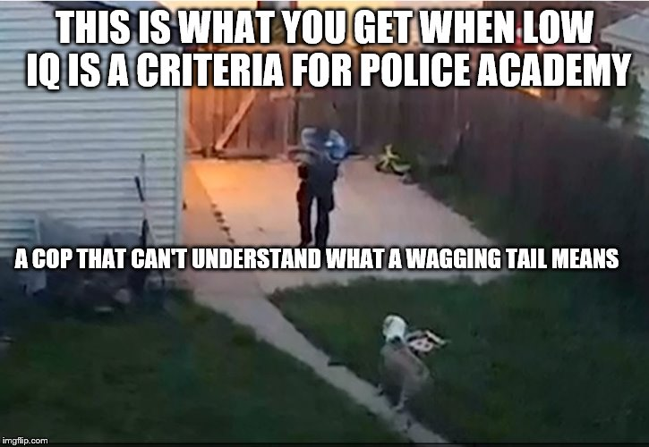 Police shoot dog | THIS IS WHAT YOU GET WHEN LOW IQ IS A CRITERIA FOR POLICE ACADEMY A COP THAT CAN'T UNDERSTAND WHAT A WAGGING TAIL MEANS | image tagged in police shoot dog,police brutality | made w/ Imgflip meme maker