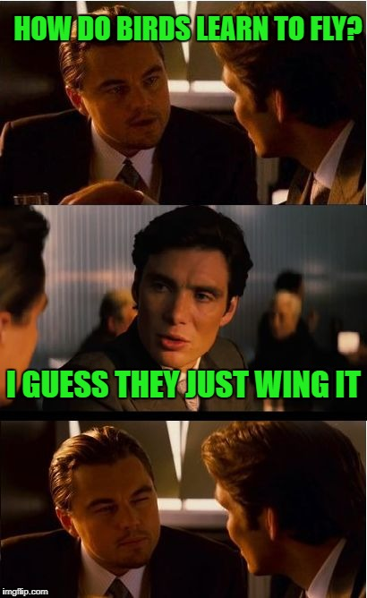 Inception Meme | HOW DO BIRDS LEARN TO FLY? I GUESS THEY JUST WING IT | image tagged in memes,inception | made w/ Imgflip meme maker