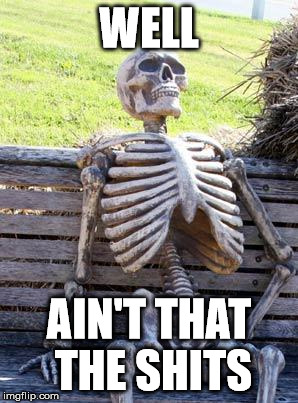 Waiting Skeleton Meme | WELL AIN'T THAT THE SHITS | image tagged in memes,waiting skeleton | made w/ Imgflip meme maker