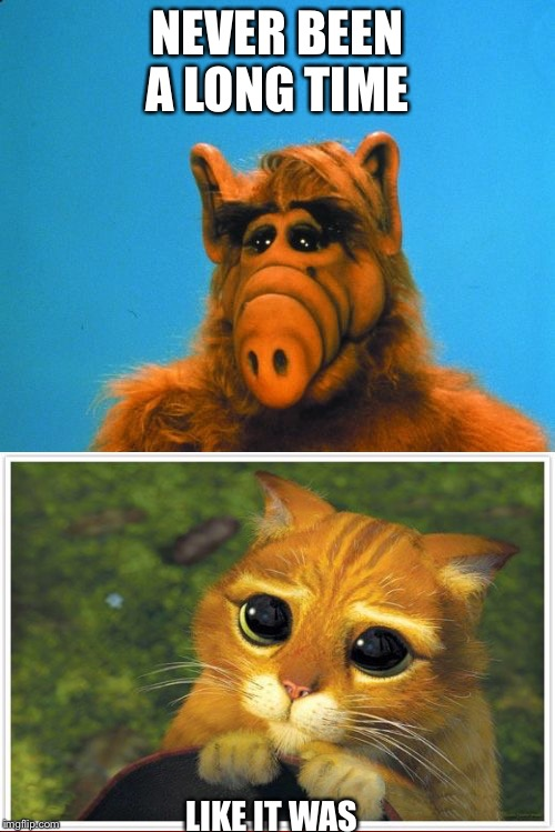 Like it was | NEVER BEEN A LONG TIME LIKE IT WAS | image tagged in memes,headbanzer,puss in boots,alf | made w/ Imgflip meme maker