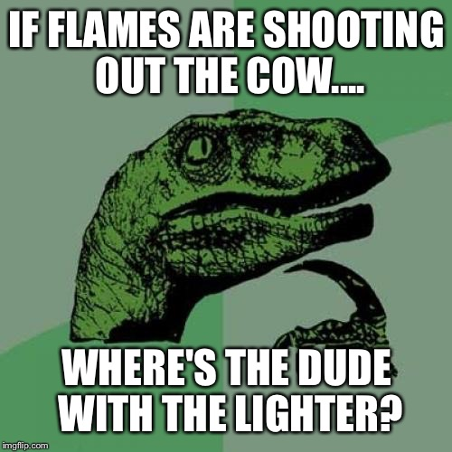Philosoraptor Meme | IF FLAMES ARE SHOOTING OUT THE COW.... WHERE'S THE DUDE WITH THE LIGHTER? | image tagged in memes,philosoraptor | made w/ Imgflip meme maker