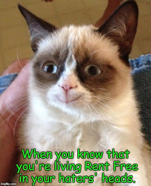 Grumpy Cat Happy Meme | When you know that you're living Rent Free in your haters' heads. | image tagged in memes,grumpy cat happy,grumpy cat | made w/ Imgflip meme maker