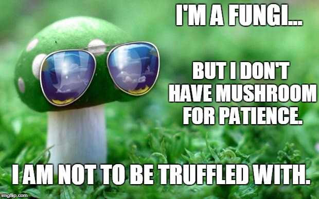 She's Not Really Into Competitive Spores | I'M A FUNGI... BUT I DON'T HAVE MUSHROOM FOR PATIENCE. I AM NOT TO BE TRUFFLED WITH. | image tagged in deal with it mushroom | made w/ Imgflip meme maker