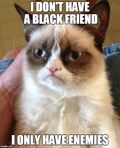 Grumpy Cat Meme | I DON'T HAVE A BLACK FRIEND I ONLY HAVE ENEMIES | image tagged in memes,grumpy cat | made w/ Imgflip meme maker