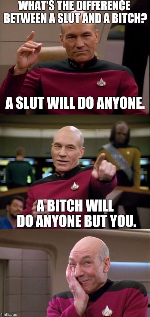 And good girls don't do ANYBODY! | WHAT'S THE DIFFERENCE BETWEEN A S**T AND A B**CH? A B**CH WILL DO ANYONE BUT YOU. A S**T WILL DO ANYONE. | image tagged in bad pun picard,memes,nsfw,bitch,sluts,sex | made w/ Imgflip meme maker