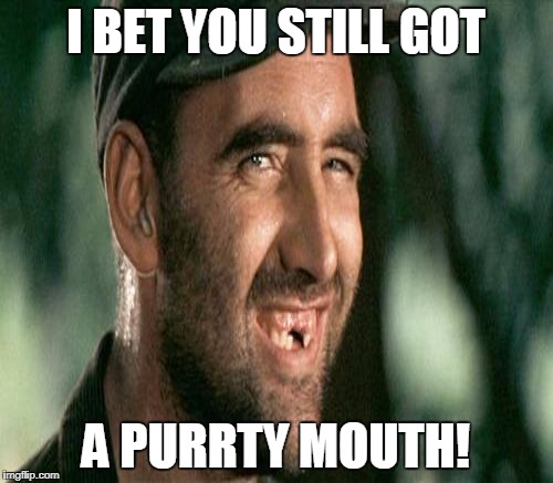 I BET YOU STILL GOT A PURRTY MOUTH! | made w/ Imgflip meme maker