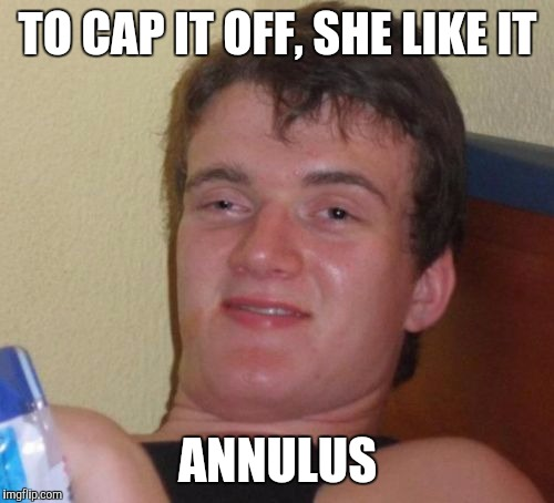 10 Guy Meme | TO CAP IT OFF, SHE LIKE IT ANNULUS | image tagged in memes,10 guy | made w/ Imgflip meme maker