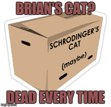 BRIAN'S CAT? DEAD EVERY TIME | made w/ Imgflip meme maker