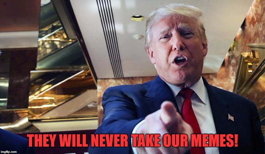 Trump Burn | THEY WILL NEVER TAKE OUR MEMES! | image tagged in trump burn | made w/ Imgflip meme maker