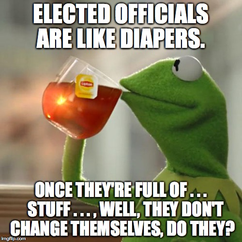 time for a change | ELECTED OFFICIALS ARE LIKE DIAPERS. ONCE THEY'RE FULL OF . . .   STUFF . . . , WELL, THEY DON'T CHANGE THEMSELVES, DO THEY? | image tagged in memes,but thats none of my business,kermit the frog | made w/ Imgflip meme maker