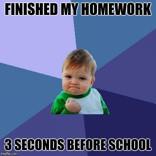 Success Kid Meme | FINISHED MY HOMEWORK 3 SECONDS BEFORE SCHOOL | image tagged in memes,success kid | made w/ Imgflip meme maker