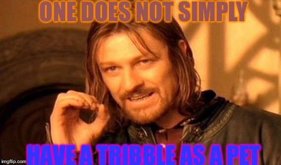 One Does Not Simply Meme | ONE DOES NOT SIMPLY HAVE A TRIBBLE AS A PET | image tagged in memes,one does not simply | made w/ Imgflip meme maker