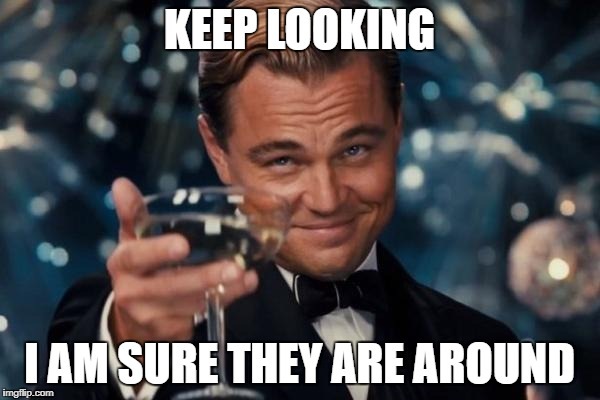 Leonardo Dicaprio Cheers Meme | KEEP LOOKING I AM SURE THEY ARE AROUND | image tagged in memes,leonardo dicaprio cheers | made w/ Imgflip meme maker