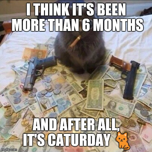 I THINK IT'S BEEN MORE THAN 6 MONTHS AND AFTER ALL, IT'S CATURDAY  | made w/ Imgflip meme maker