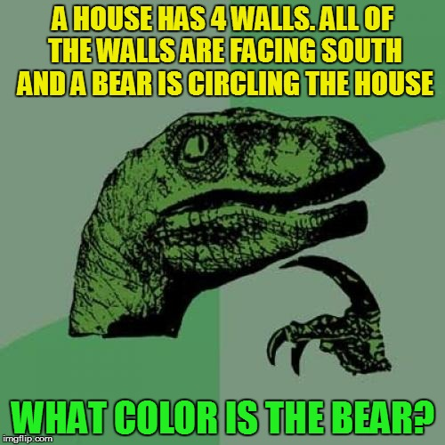 Can you solve the philoso-riddle? Riddle Weekend, a Craziness_all_the_way and socrates event! July 14-16 | A HOUSE HAS 4 WALLS. ALL OF THE WALLS ARE FACING SOUTH AND A BEAR IS CIRCLING THE HOUSE WHAT COLOR IS THE BEAR? | image tagged in memes,philosoraptor,riddle weekend,riddles and brainteasers,riddle,fun | made w/ Imgflip meme maker