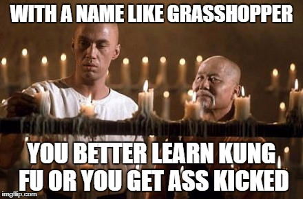 kung fu grasshopper | WITH A NAME LIKE GRASSHOPPER YOU BETTER LEARN KUNG FU OR YOU GET ASS KICKED | image tagged in kung fu grasshopper | made w/ Imgflip meme maker