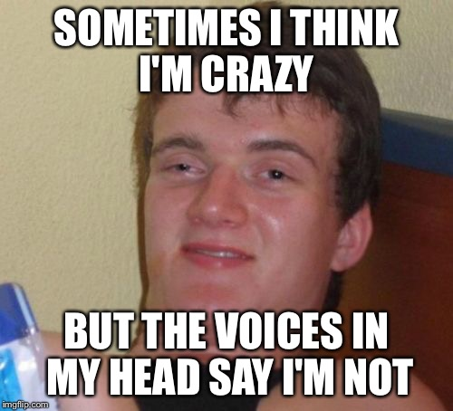 I feel like I've seen this before, i just don't remember where. Thought I'd submit it. | SOMETIMES I THINK I'M CRAZY BUT THE VOICES IN MY HEAD SAY I'M NOT | image tagged in memes,10 guy | made w/ Imgflip meme maker