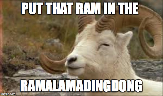PUT THAT RAM IN THE RAMALAMADINGDONG | made w/ Imgflip meme maker