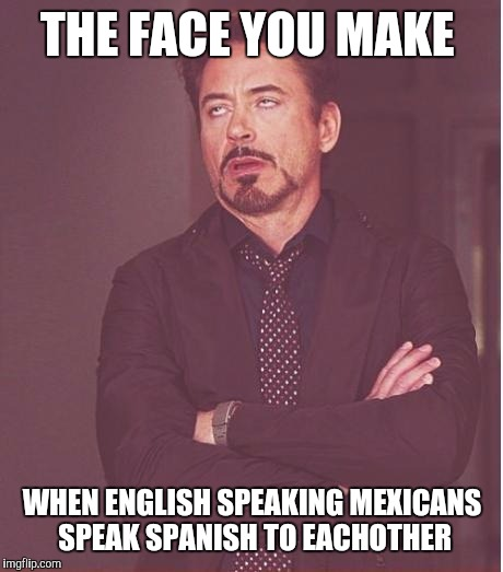 Face You Make Robert Downey Jr Meme | THE FACE YOU MAKE WHEN ENGLISH SPEAKING MEXICANS SPEAK SPANISH TO EACHOTHER | image tagged in memes,face you make robert downey jr | made w/ Imgflip meme maker