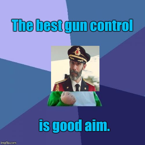 AYE AYE CAPTAIN (ty Raydog for suggesting making a cap obv meme out of my comment) | The best gun control is good aim. | image tagged in funny,captain obvious,guns,humor,memes,politics | made w/ Imgflip meme maker
