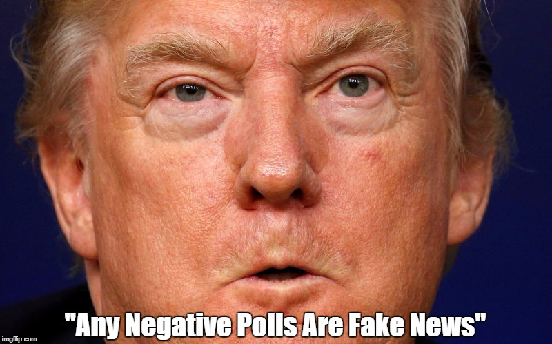 """Any Negative Polls Are Fake News"" 