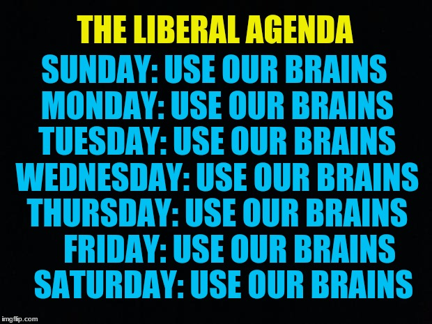 Black Background | THE LIBERAL AGENDA SUNDAY: USE OUR BRAINS MONDAY: USE OUR BRAINS TUESDAY: USE OUR BRAINS WEDNESDAY: USE OUR BRAINS THURSDAY: USE OUR BRAINS  | image tagged in black background | made w/ Imgflip meme maker