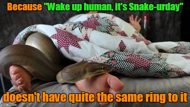 "Because ""Wake up human, it's Snake-urday"" doesn't have quite the same ring to it ""Wake up human, it's Snake-urday"" 