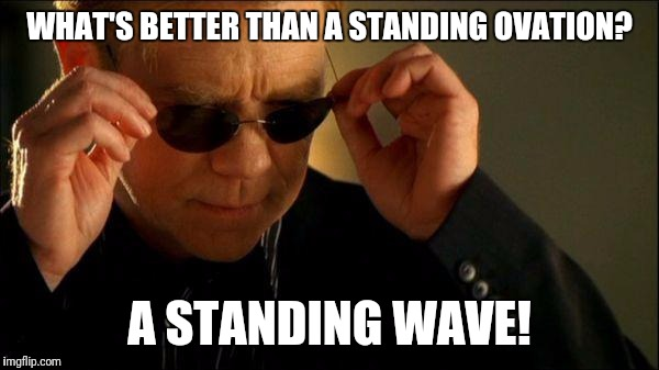 Standing wave | WHAT'S BETTER THAN A STANDING OVATION? A STANDING WAVE! | image tagged in horatio csi,wave,science | made w/ Imgflip meme maker
