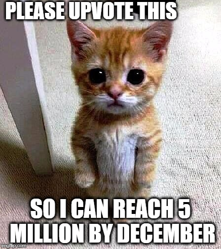 If you don't help me,  I'll cwy | PLEASE UPVOTE THIS SO I CAN REACH 5 MILLION BY DECEMBER | image tagged in pathetic kitty,pleading for upvotes,no shame | made w/ Imgflip meme maker