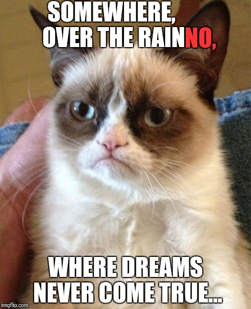 When your high expectations fall flat. | SOMEWHERE, OVER THE RAIN WHERE DREAMS NEVER COME TRUE... NO, | image tagged in memes,grumpy cat,funny | made w/ Imgflip meme maker